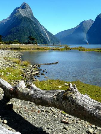 New Zealand 2008